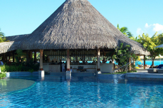 Free Bar in tropical hotel Picture for Android, iPhone and iPad