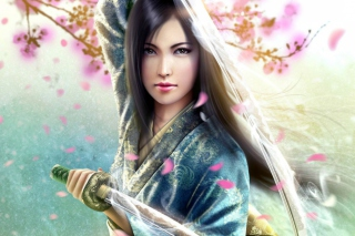 Free Woman Samurai Picture for Android, iPhone and iPad