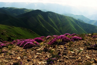 Armenia Mountain Picture for Android, iPhone and iPad