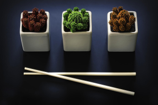 Chinese Chopsticks Wallpaper for LG Optimus U