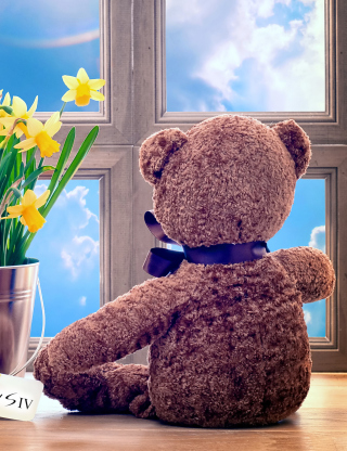 Kostenloses Teddy Bear with Bouquet Wallpaper für 480x800