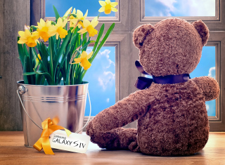 Teddy Bear with Bouquet Background for Android, iPhone and iPad