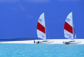 Sailing Boats On Exotic Beach Background for Android, iPhone and iPad
