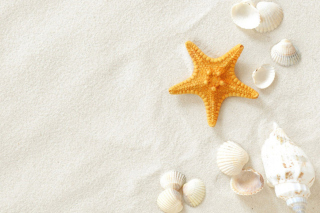 White Sand Background for Sony Xperia M
