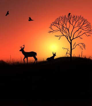 Kostenloses Deer Silhouettes At Red Sunset Wallpaper für Nokia 5233