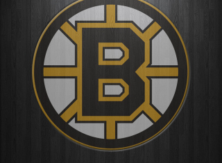 Free Boston Bruins Picture for 1920x1080