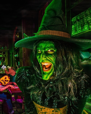 Wicked Witch Wallpaper for Nokia Asha 310
