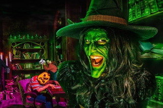 Wicked Witch sfondi gratuiti per Nokia X2-01