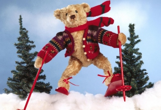 Free Teddy In Alps Picture for Android, iPhone and iPad