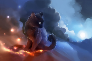 Free Kitten in Clouds Picture for Android 480x800