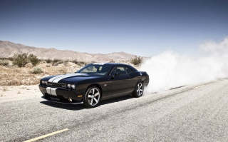 Free Dodge Challenger Srt8 Picture for Android, iPhone and iPad