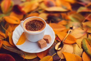 Autumn Cappuccino Background for Android, iPhone and iPad
