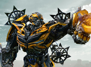Bumblebee Picture for Android, iPhone and iPad