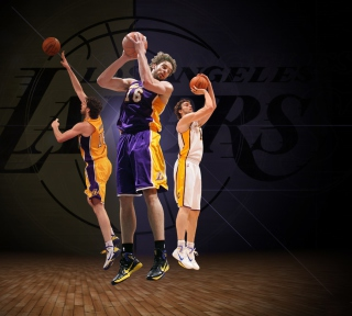 Free Pau Gasol Basketball Palyer Picture for iPad 3