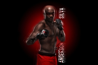Anderson Silva UFC Wallpaper for HTC Raider 4G