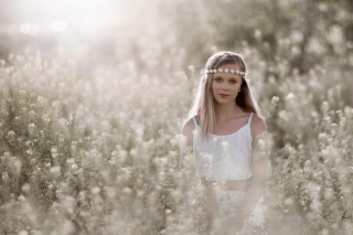 Romantic Girl In Summer Field - Fondos de pantalla gratis