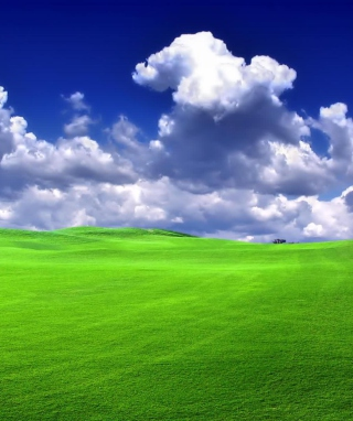 Free Windows XP Sky Picture for 176x220