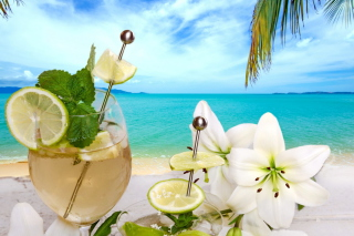 Tropical Drink Wallpaper for Android 800x1280