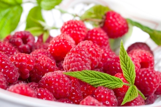 Plate Of Raspberries Background for Android, iPhone and iPad