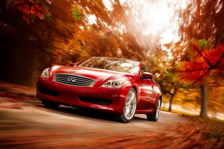 Free Infiniti Autumn Picture for Android, iPhone and iPad