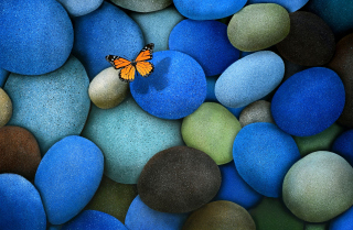 Orange Butterfly On Blue Stones Wallpaper for Android, iPhone and iPad