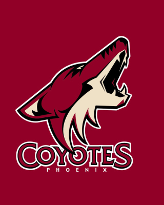 Phoenix Coyotes NHL Team Wallpaper for Nokia C-5 5MP