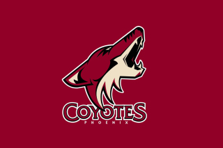 Free Phoenix Coyotes NHL Team Picture for Samsung Galaxy Tab 4G LTE