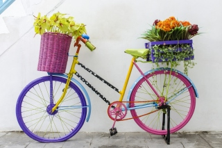 Flowers on Bicycle Background for Android, iPhone and iPad