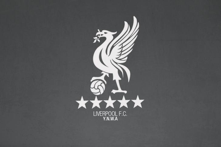 Kartinka Liverpool Fc Ynwa Dlya Telefona I Na Rabochij Stol