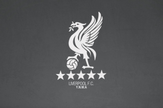 Liverpool Fc Ynwa Background for 1400x1050