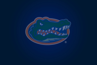 Florida Gators Wallpaper for Android 480x800
