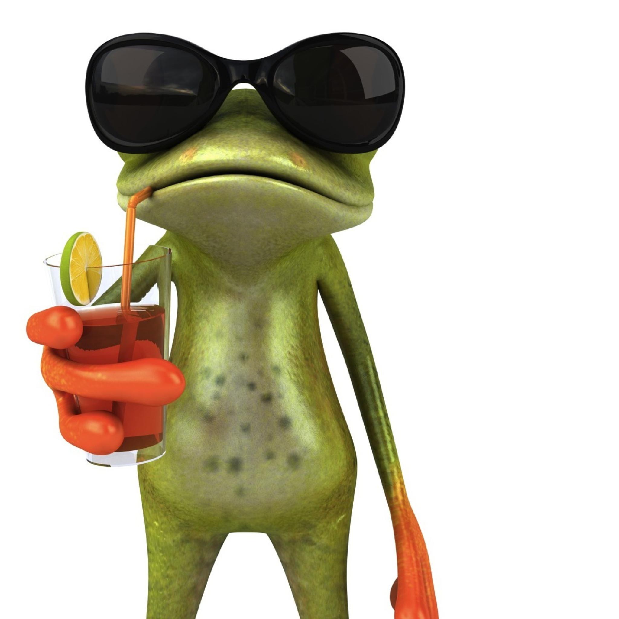 забавня жабка скачать