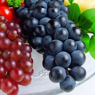 Grapes Wallpaper for LG KP105