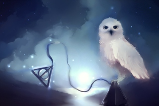 White Owl Painting sfondi gratuiti per cellulari Android, iPhone, iPad e desktop