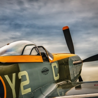 Kostenloses North American P 51 Mustang Air Fighter in World War 2 Wallpaper für 1024x1024