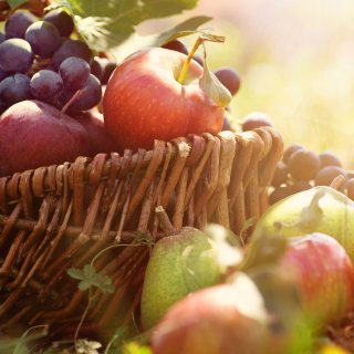 Free Apples and Grapes Picture for iPad mini