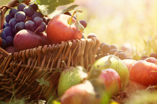 Apples and Grapes Background for 1280x960