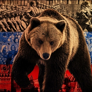 Russian Bear on Flag Background - Obrázkek zdarma pro 208x208