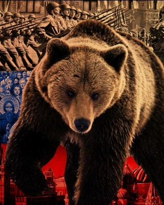 Free Russian Bear on Flag Background Picture for Nokia Asha 305