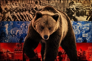 Russian Bear on Flag Background Picture for Android, iPhone and iPad