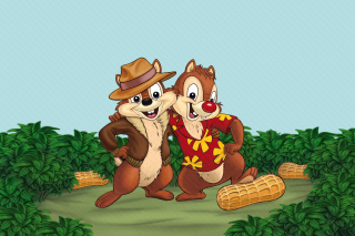 Chip and Dale Rescue Rangers 3 papel de parede para celular