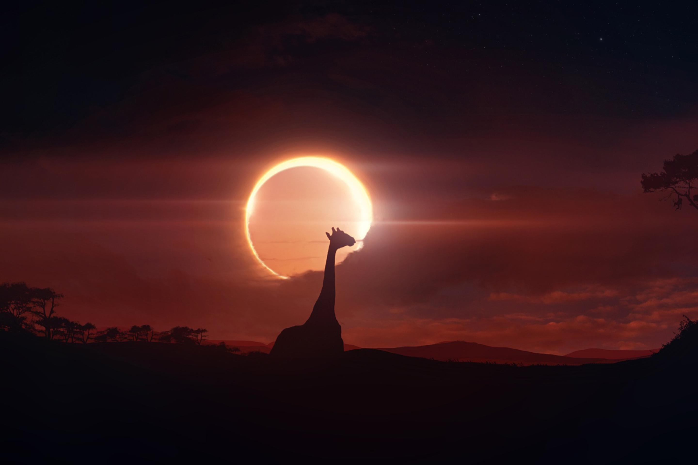 Картинки солнца и луны на рабочий стол