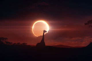 Eclipse Background for Samsung I9080 Galaxy Grand