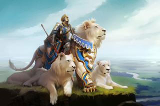 Knight with Lions Wallpaper for Samsung Galaxy Tab 10.1