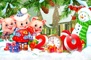 2019 Pig New Year Chinese Horoscope sfondi gratuiti per 640x480