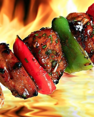 Grill Kebab Picture for Nokia Asha 306