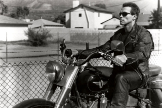 Free Terminator 2 Arnold Schwarzenegger Picture for Android, iPhone and iPad
