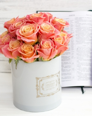 Roses and Book Picture for 240x320