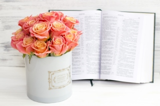 Roses and Book Background for Widescreen Desktop PC 1600x900