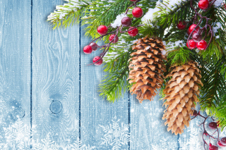 Indoor Christmas Decorations Background for Android, iPhone and iPad